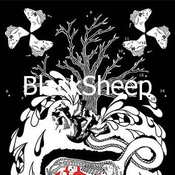 BlackSheep mini01