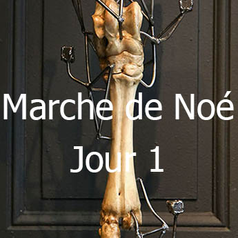 Marche de Noe Jour 1 mini01