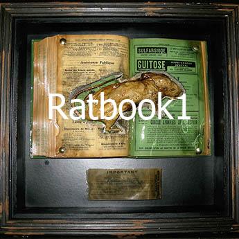 Ratbook1 mini01